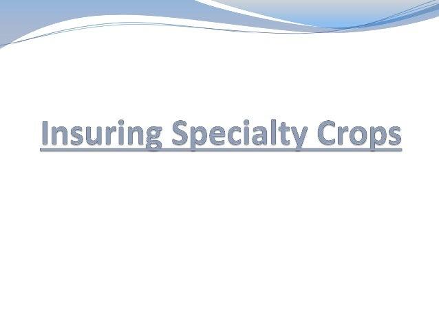 Jordan Olsen Crop Insurance Specialist Frontier Farm Credit – Baldwin City Branch