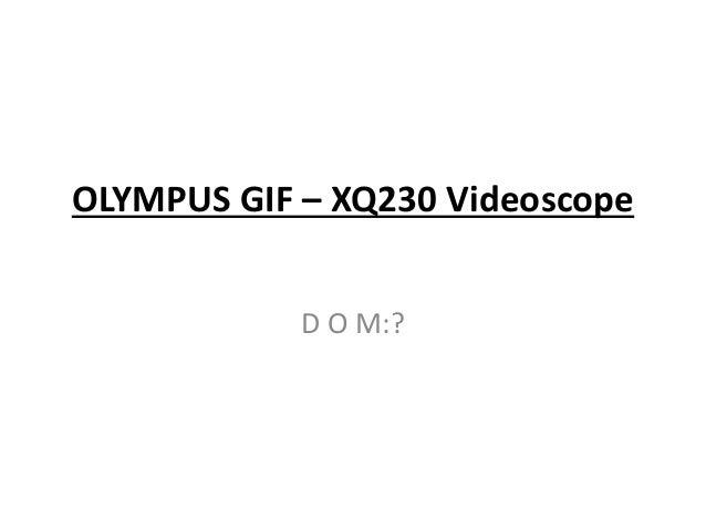OLYMPUS GIF – XQ230 Videoscope D O M:?