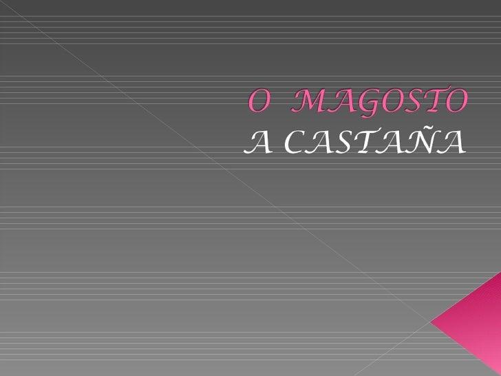O  Magosto.Sagrada Familia