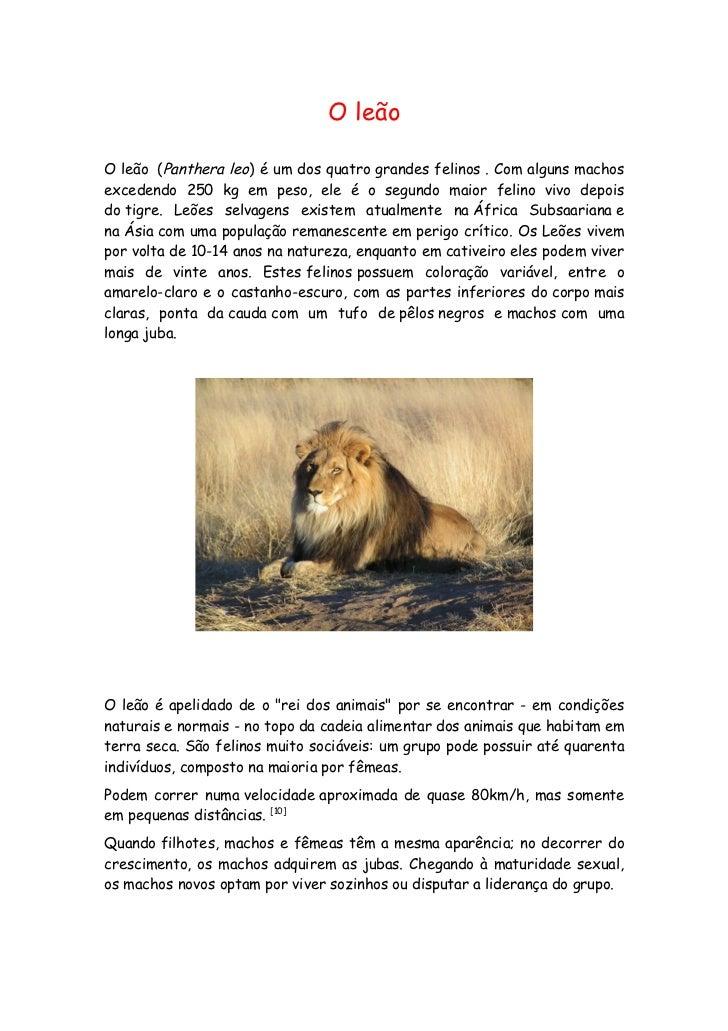 O leãoO leão (Panthera leo) é um dos quatro grandes felinos . Com alguns machosexcedendo 250 kg em peso, ele é o segundo m...