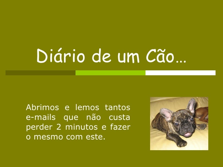 Diário de um Cão… Abrimos e lemos tantos e-mails que não custa perder 2 minutos e fazer o mesmo com este.