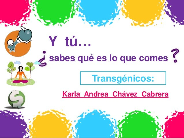 Y tú…sabes qué es lo que comes         Transgénicos:  Karla Andrea Chávez Cabrera