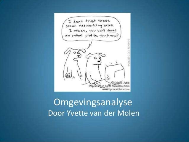 Omgevingsanalyse Door Yvette van der Molen