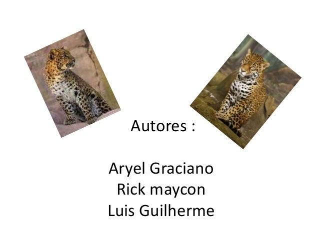 Autores :  Aryel Graciano  Rick maycon  Luis Guilherme