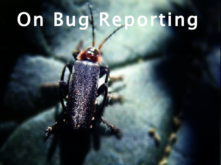 On Bug Reporting