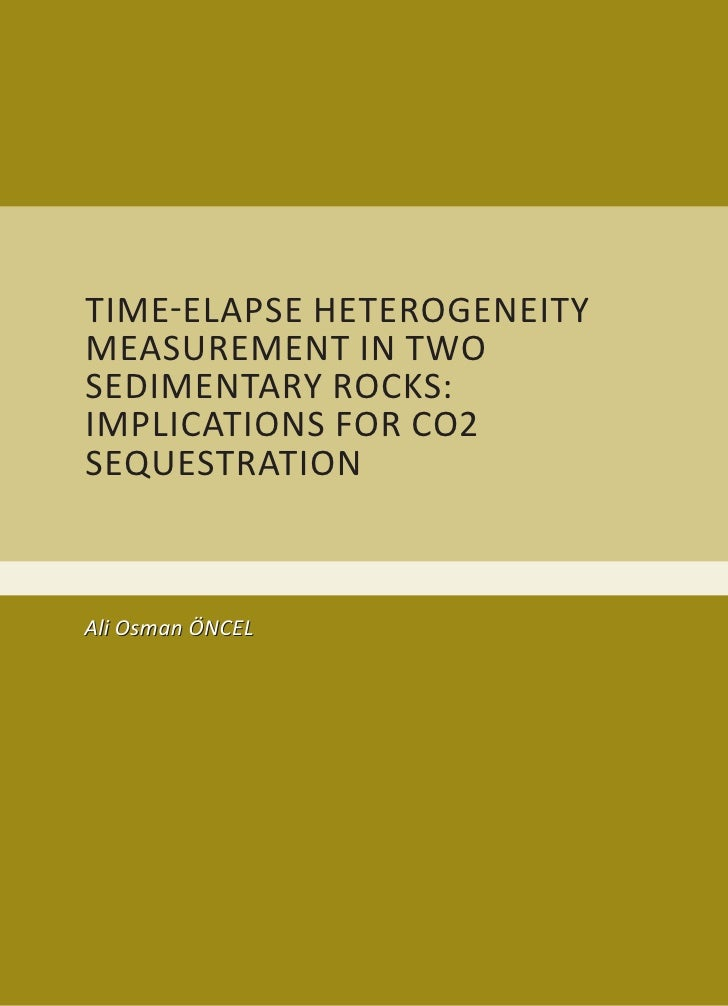 Time-elApSe heTerogeneiTy meASuremenT in Two SedimenTAry roCkS: impliCATionS For Co2 SequeSTrATion