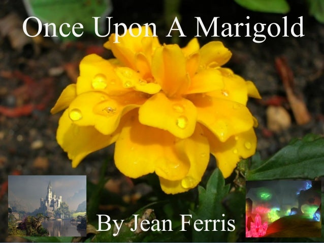 By Jean FerrisBy Jean Ferris Once Upon A Marigold By Jean Ferris