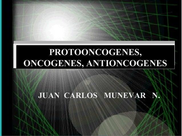PROTOONCOGENES,ONCOGENES, ANTIONCOGENES  JUAN CARLOS MUNEVAR N.