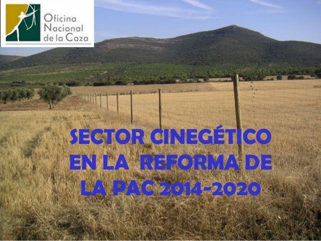 SECTOR CINEGÉTICO EN LA REFORMA DE LA PAC 2014-2020