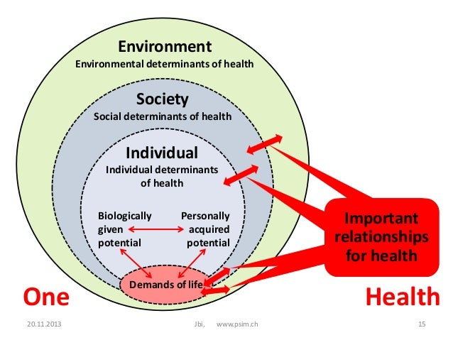 12 social determinants of health