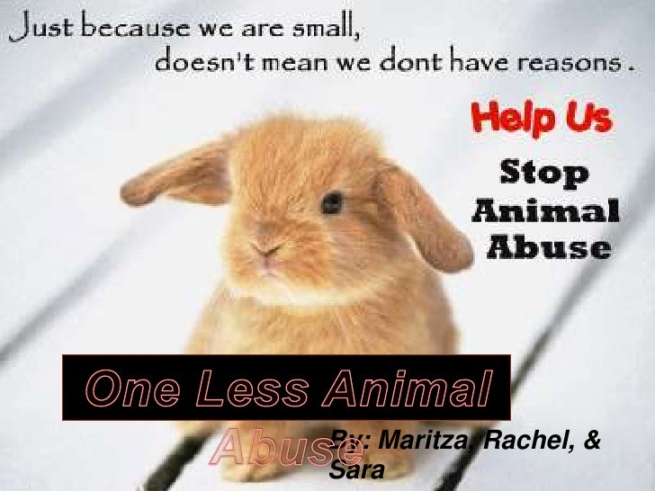One Less Animal Abuse<br />By: Maritza, Rachel, & Sara<br />