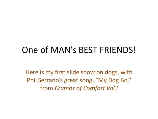 """One of MAN's BEST FRIENDS! Here is my first slide show on dogs, with Phil Serrano's great song, """"My Dog Bo,"""" from Crumbs o..."""