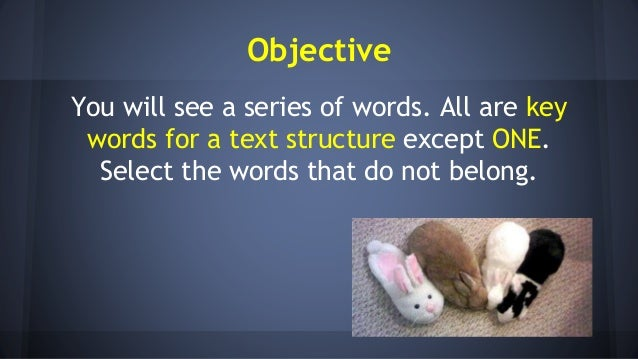 Other words for presentation