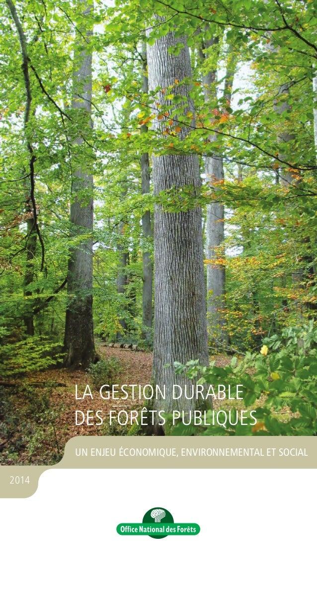 ••• TROISIÈME FORÊT D'EUROPE • 28 % du territoire métropolitain est couvert de forêt (soit 16 millions d'hectares*) • 25 %...