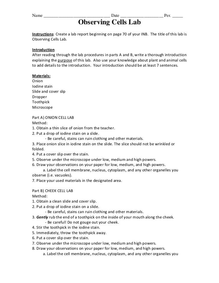 science fair procedure template