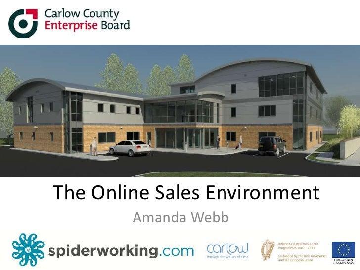 The Online Sales Environment<br />Amanda Webb<br />