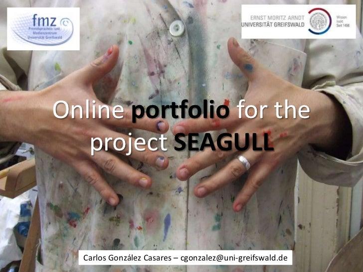 Online portfolio for the project SEAGULL<br />Carlos González Casares – cgonzalez@uni-greifswald.de<br />