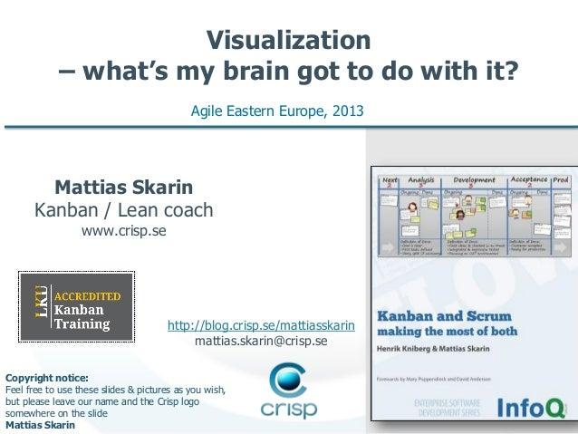 "AGILEEE 2013: Mattias Skarin ""Visualization — what's my brain got to do with it?"""