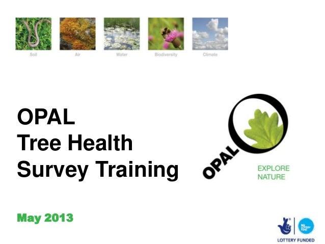 OPALTree HealthSurvey TrainingMay 2013