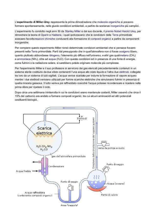 Lesperimento di Miller-Urey rappresenta la prima dimostrazione che molecole organiche si possonoformare spontaneamente, ne...