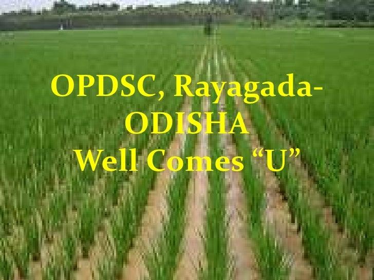 Opdsc odisha