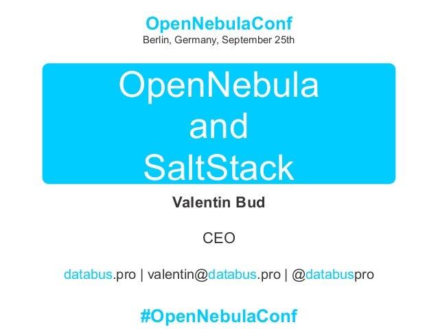 OpenNebula and SaltStack - OpenNebulaConf 2013