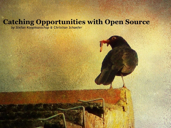 Catching Opportunities with Open Source by Stefan Koopmanschap & Christian Schaefer