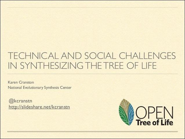 Open Tree of Life Phyloseminar 2014