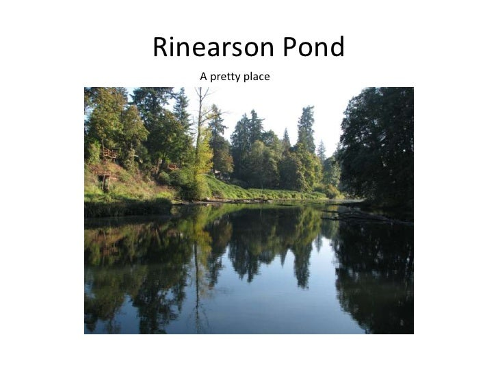 Rinearson Pond<br />A pretty place<br />
