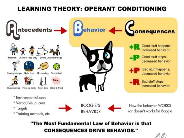 examples of operant conditioning An operant response is a behavior that is modifiable by its consequences  for  example, speeding through a red light may lead to getting struck broadside by.