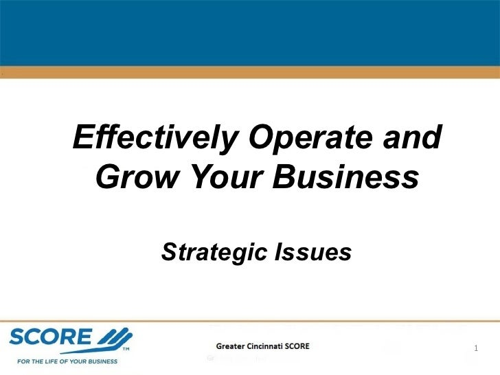 Effectively Operate and Grow Your Business Strategic Issues