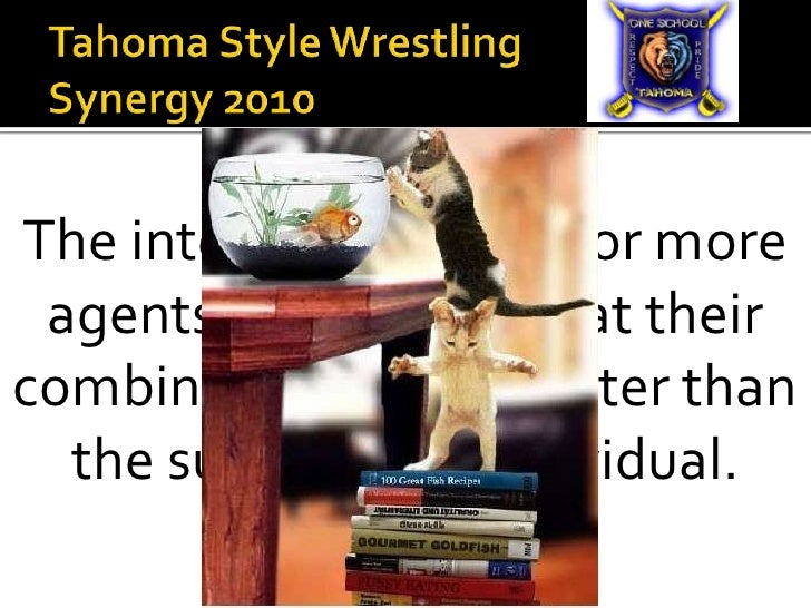 Tahoma Style WrestlingSynergy 2010                            <br />The interaction of two or more agents or forces so tha...