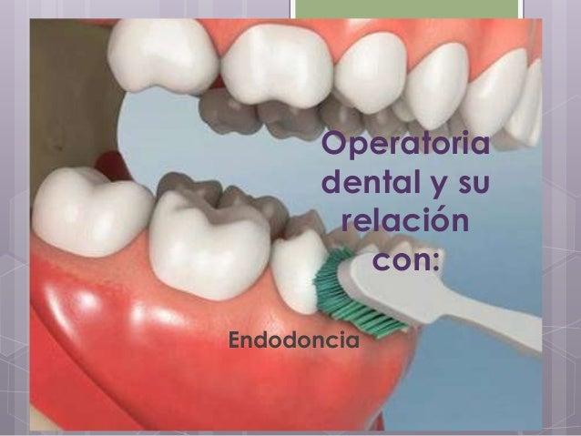 Operatoriadental y surelacióncon:Endodoncia