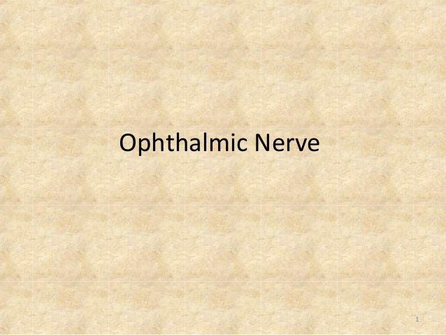 Ophthalmic Nerve  1