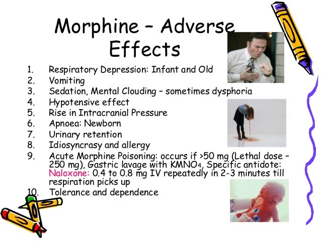 effects of morphine essay Effects of heroin essay while the free essays can give you inspiration for writing,  morphine hits the back of the leg first, then the back of the neck,.