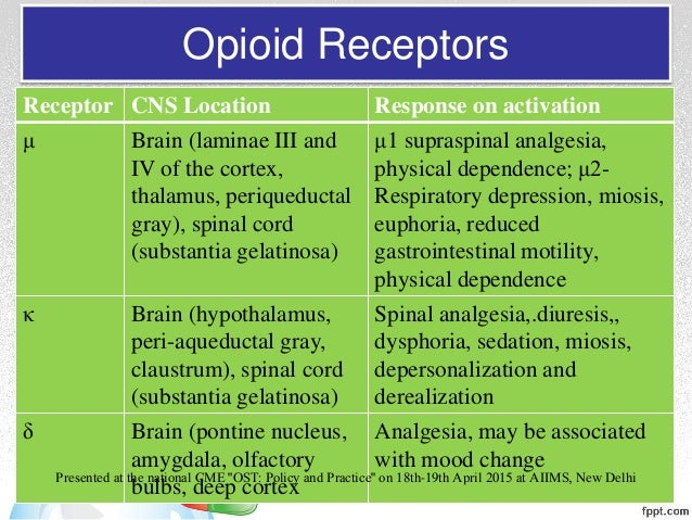 the receptor sites for steroid hormones are found in the