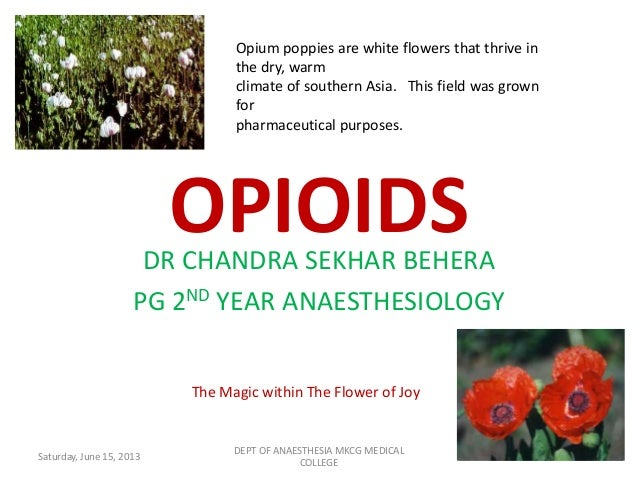 OPIOIDSDR CHANDRA SEKHAR BEHERAPG 2ND YEAR ANAESTHESIOLOGYThe Magic within The Flower of JoyOpium poppies are white flower...