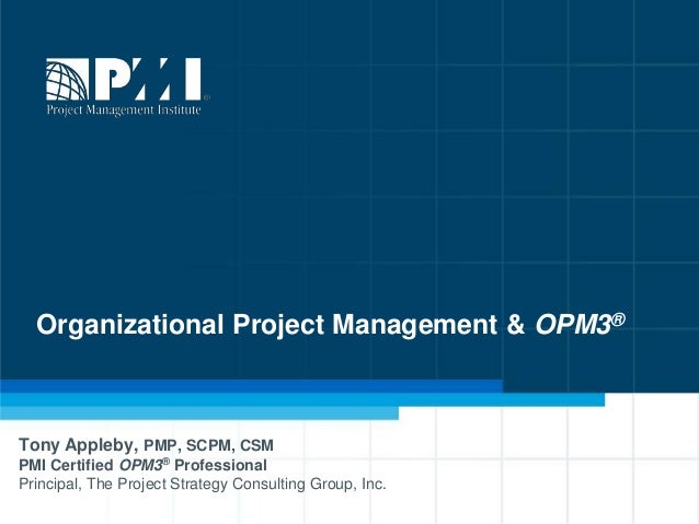 PMI's Organizational Project Management and OPM3