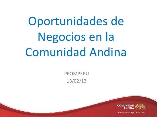 Oportunidades de Negocios en la Comunidad Andina PROMPERU 13/02/13
