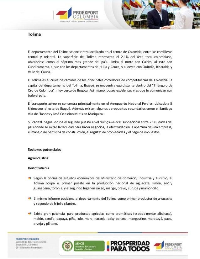Oportunidades Sectoriales - Región Ibagué, Tolima