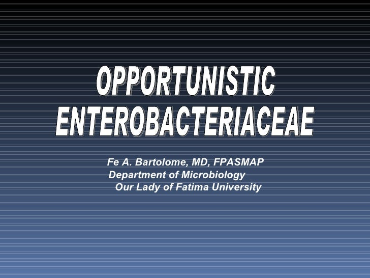 OPPORTUNISTIC ENTEROBACTERIACEAE Fe A. Bartolome, MD, FPASMAP  Department of Microbiology  Our Lady of Fatima University
