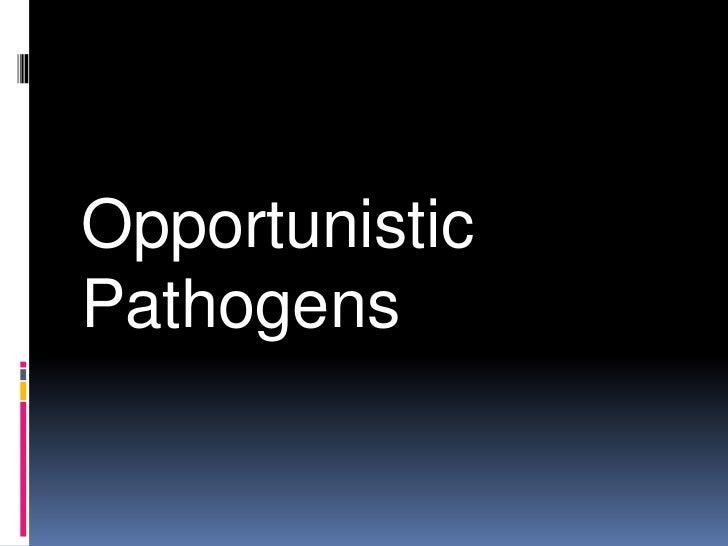 Opportunistic pathogens