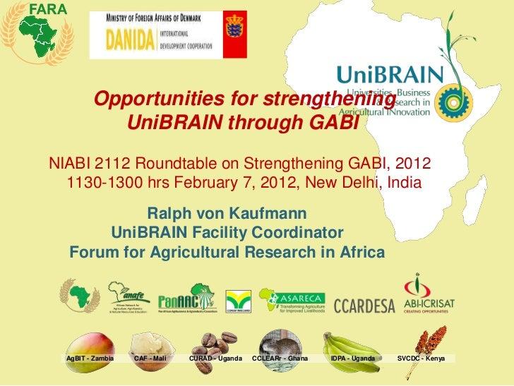 Opportunities for strengthening           UniBRAIN through GABINIABI 2112 Roundtable on Strengthening GABI, 2012  1130-130...