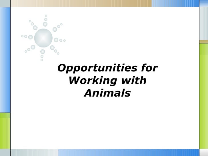 Opportunities for Working with   Animals
