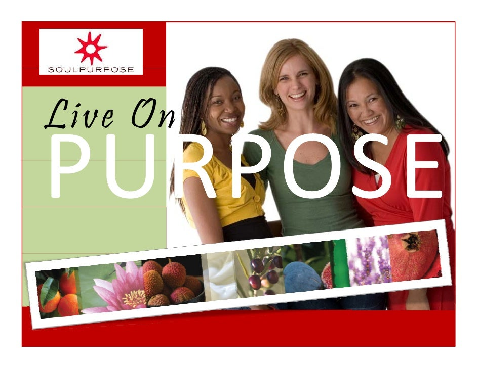 Soul Purpose Opportunity Presentation