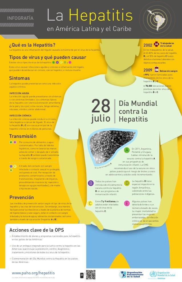 INFOGRAFÍA                                                    La Hepatitis                                                ...