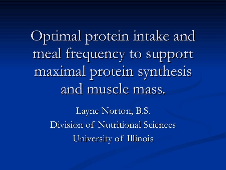 Optimal protein intake and meal frequency to support maximal protein synthesis and muscle mass. Layne Norton, B.S. Divisio...