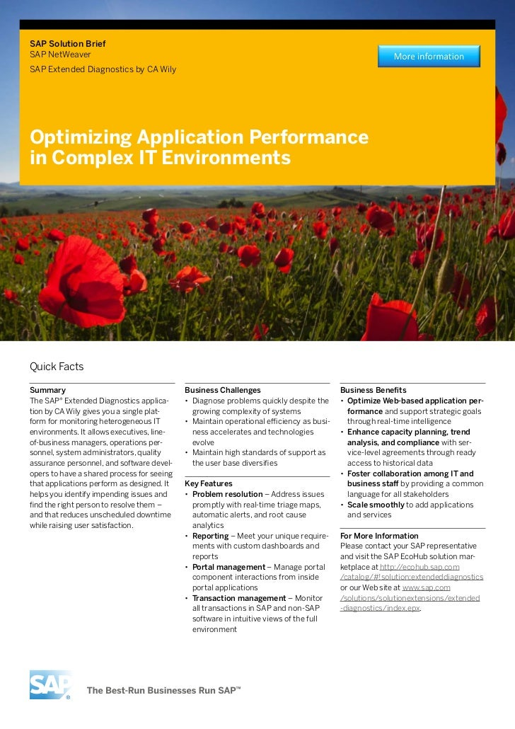 Optimizing Application Performance in Complex IT Environments