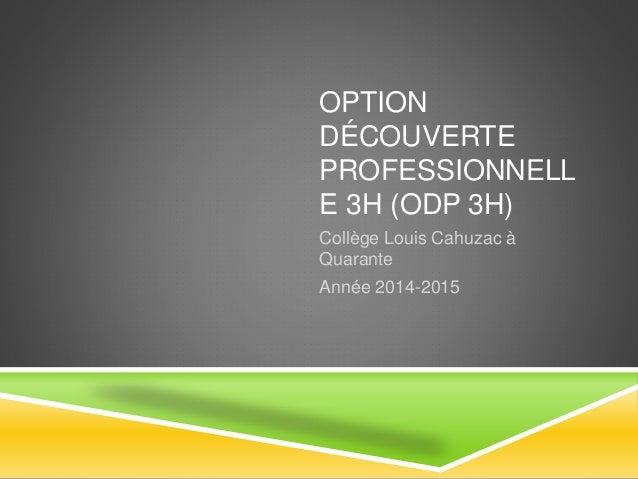 OPTION  DÉCOUVERTE  PROFESSIONNELL  E 3H (ODP 3H)  Collège Louis Cahuzac à  Quarante  Année 2014-2015