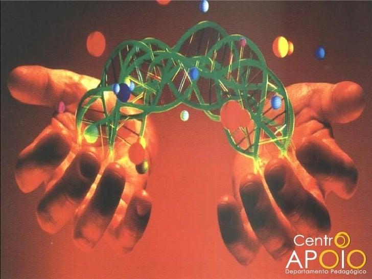 www.aulasdebiologiaapoio.com - Biologia -  Membrana Plasmática